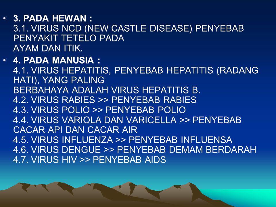 3. PADA HEWAN : 3.1. VIRUS NCD (NEW CASTLE DISEASE) PENYEBAB PENYAKIT TETELO PADA AYAM DAN ITIK.