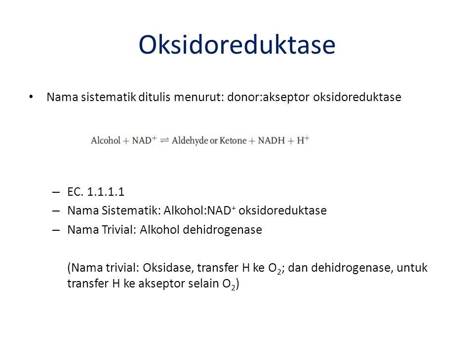 Oksidoreduktase Nama sistematik ditulis menurut: donor:akseptor oksidoreduktase. EC. 1.1.1.1. Nama Sistematik: Alkohol:NAD+ oksidoreduktase.