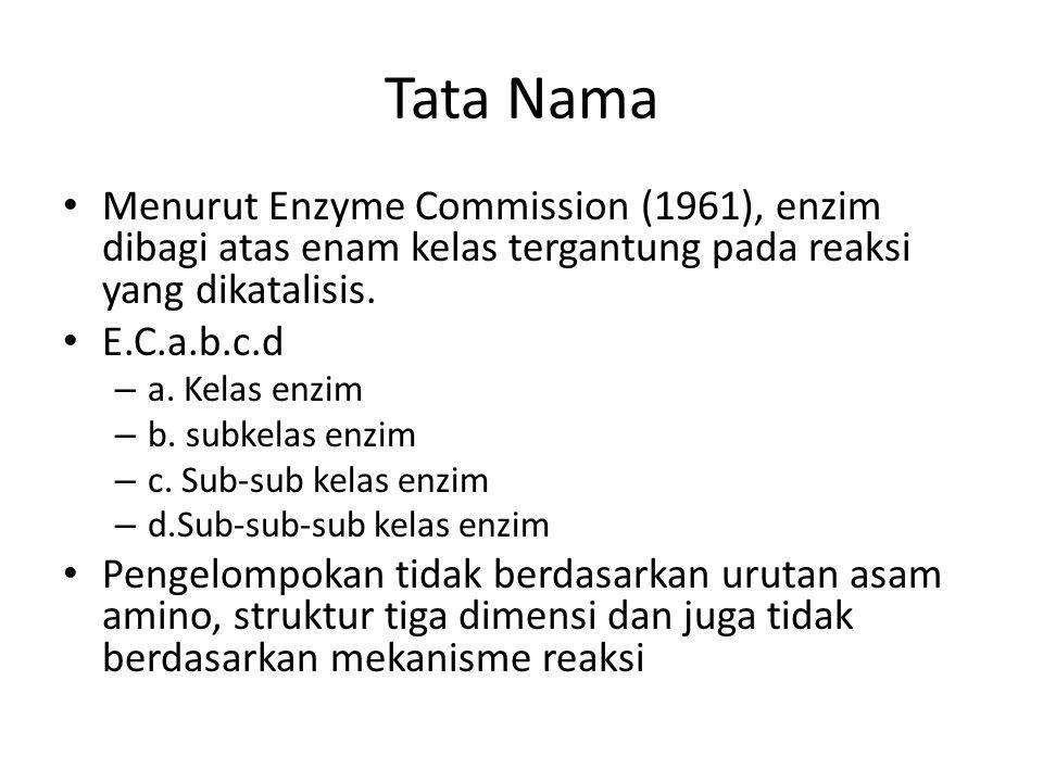 Tata Nama Menurut Enzyme Commission (1961), enzim dibagi atas enam kelas tergantung pada reaksi yang dikatalisis.