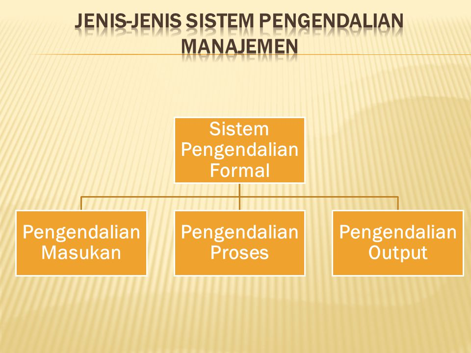 JENIS-JENIS SISTEM PENGENDALIAN MANAJEMEN