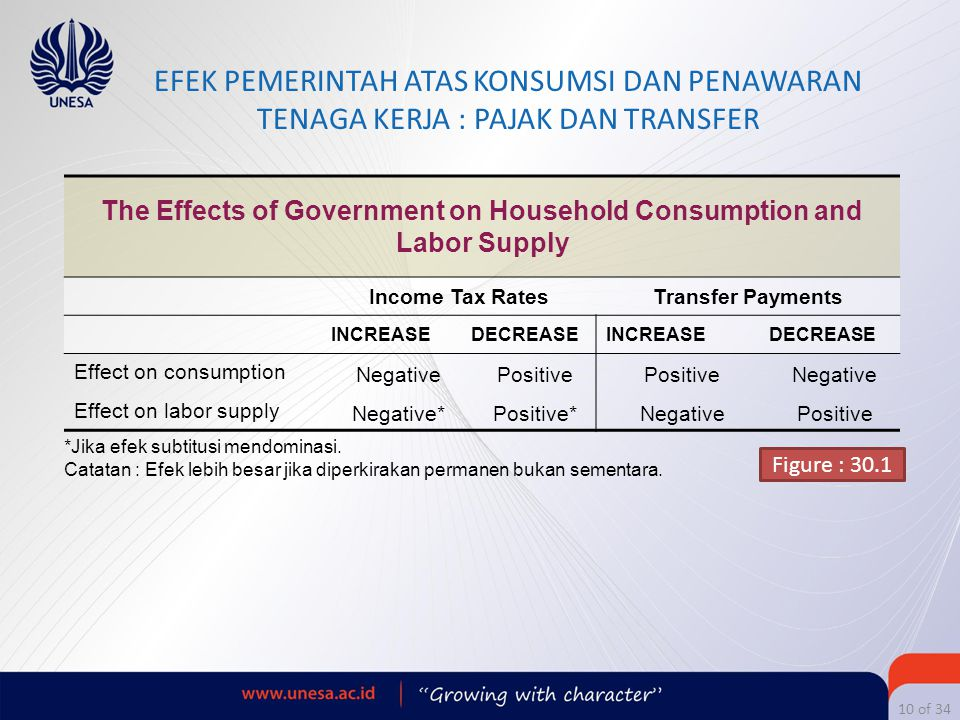 The Effects of Government on Household Consumption and Labor Supply