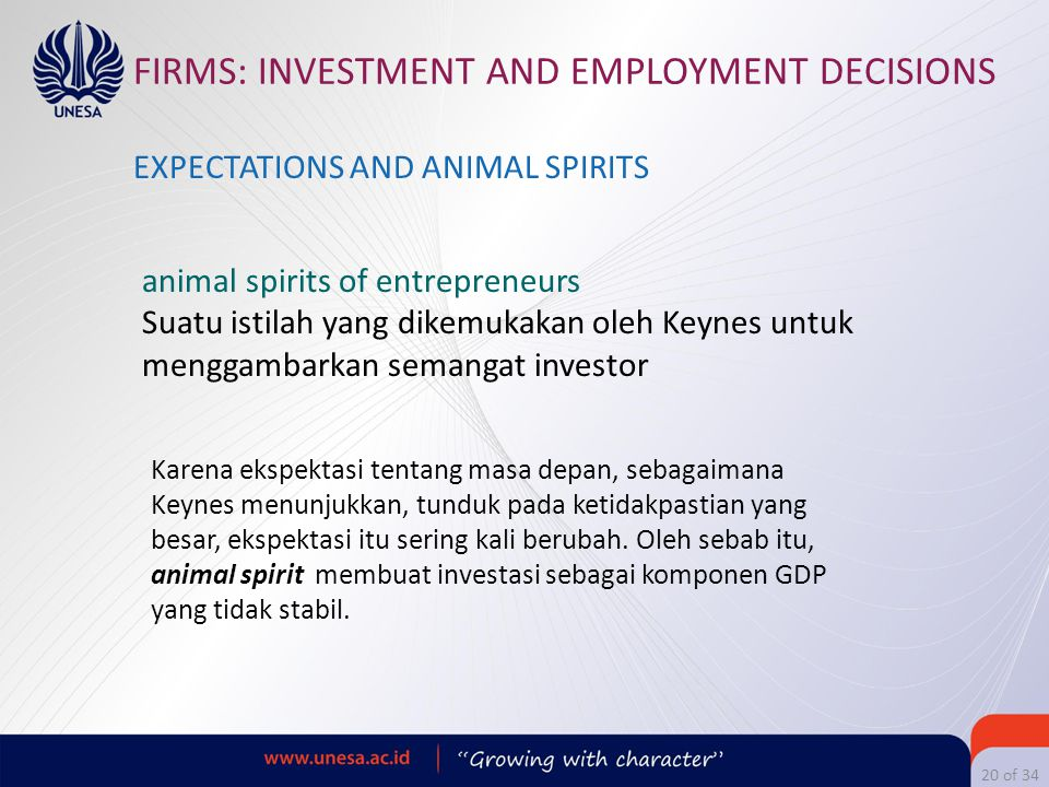 FIRMS: INVESTMENT AND EMPLOYMENT DECISIONS