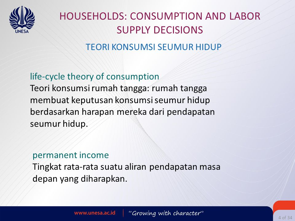 HOUSEHOLDS: CONSUMPTION AND LABOR SUPPLY DECISIONS