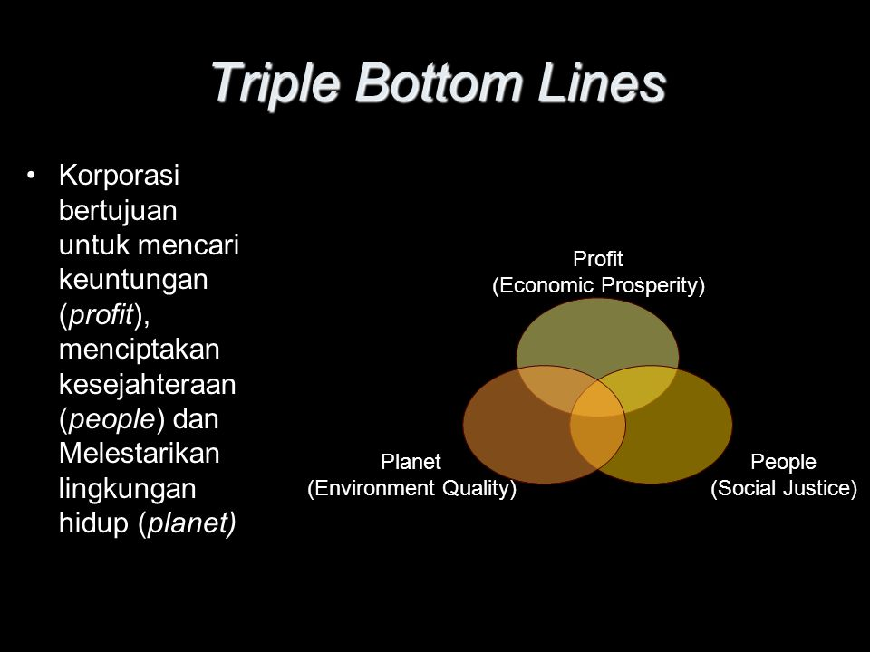 Triple Bottom Lines