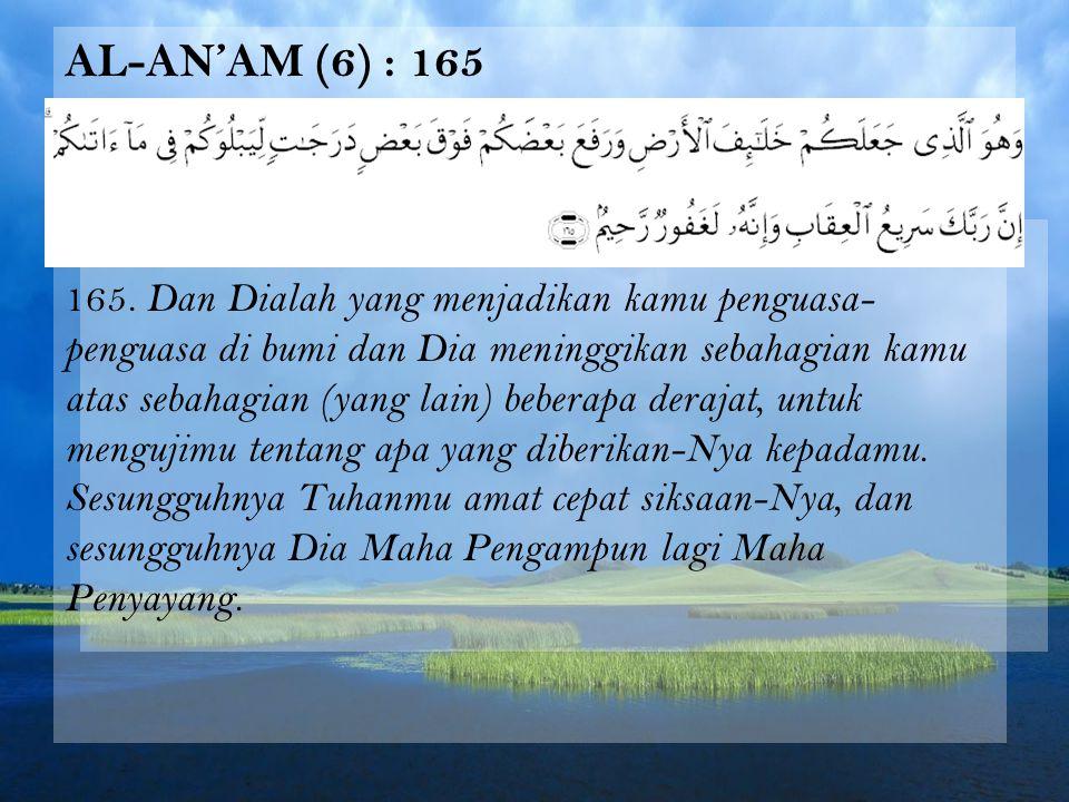 Al-An'am (6) : 165