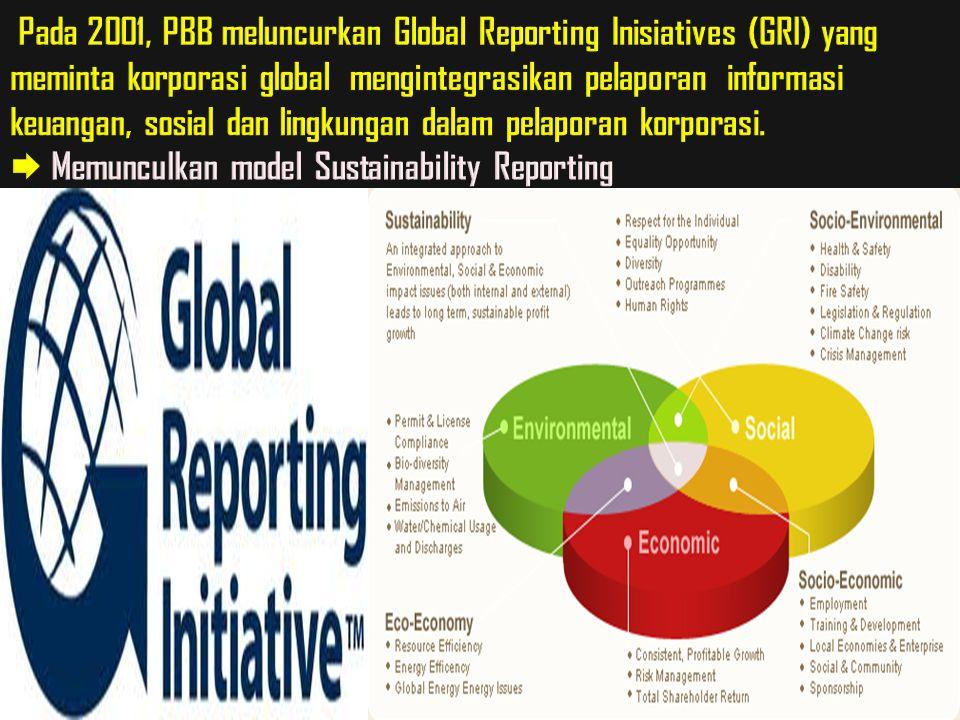 Pada 2001, PBB meluncurkan Global Reporting Inisiatives (GRI) yang meminta korporasi global mengintegrasikan pelaporan informasi keuangan, sosial dan lingkungan dalam pelaporan korporasi.