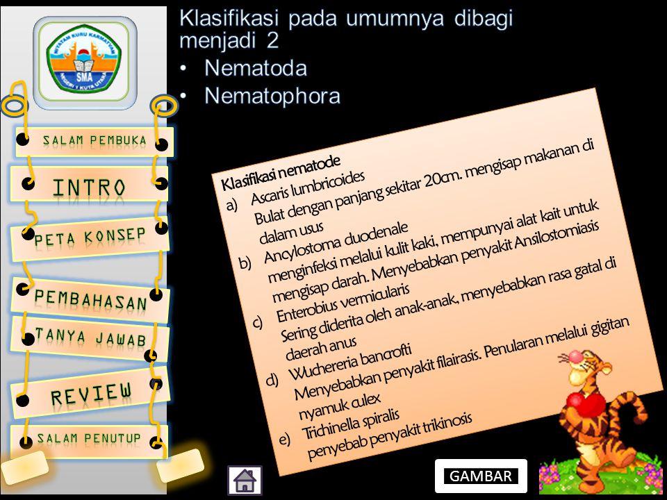 INTRO Klasifikasi pada umumnya dibagi menjadi 2 Nematoda Nematophora