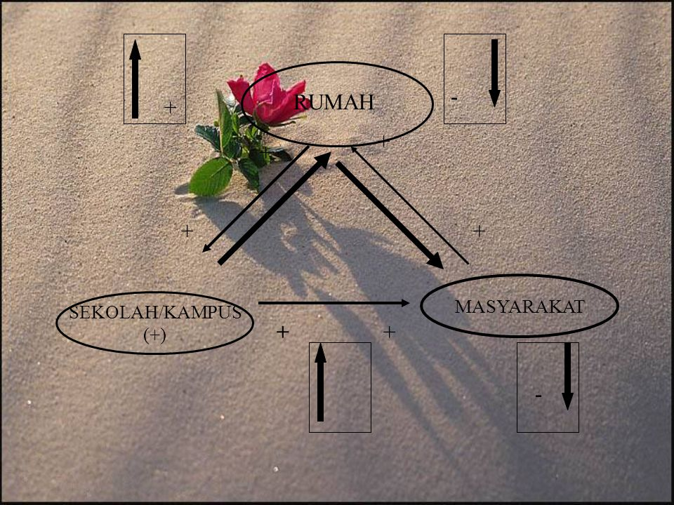 - RUMAH + + + + + MASYARAKAT SEKOLAH/KAMPUS (+) + + -