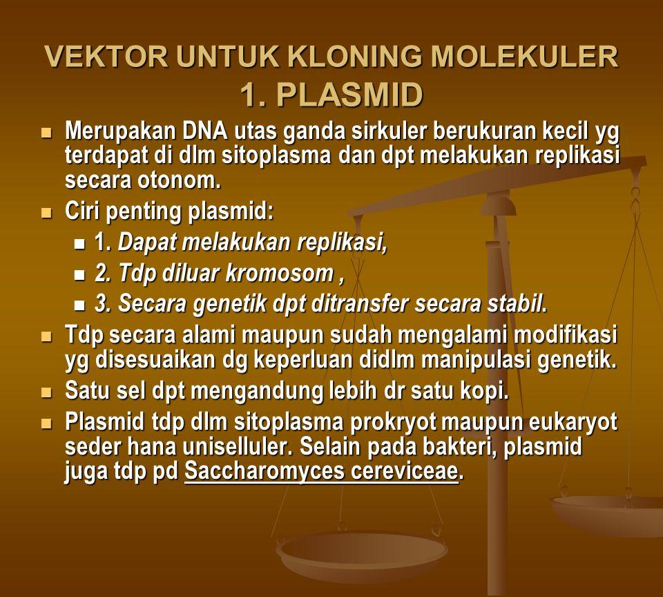 VEKTOR UNTUK KLONING MOLEKULER 1. PLASMID