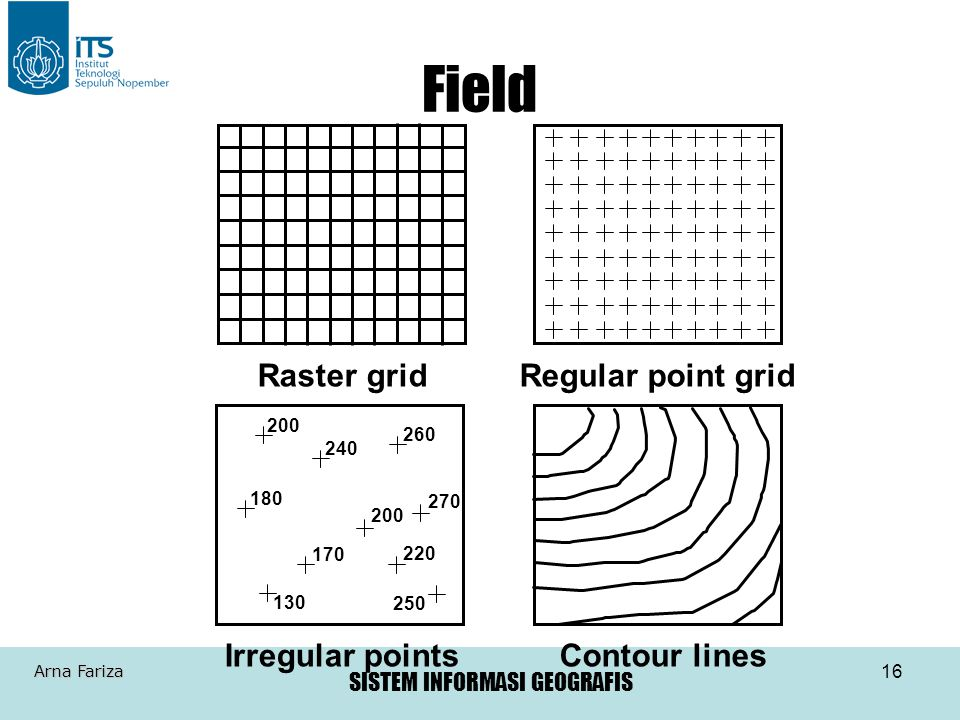 Field Raster grid Regular point grid Irregular points Contour lines