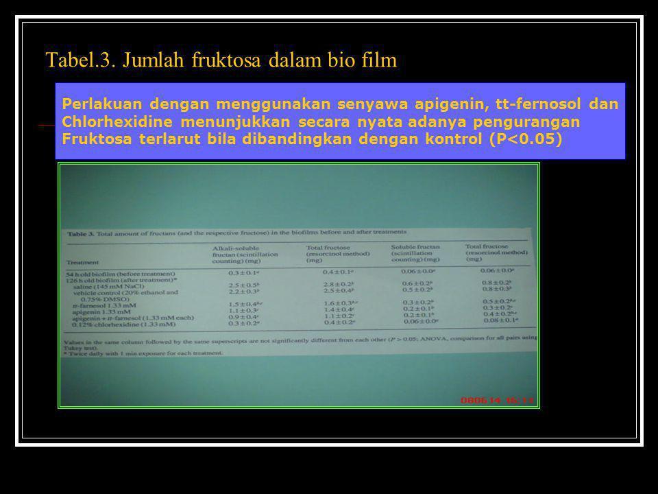 Tabel.3. Jumlah fruktosa dalam bio film