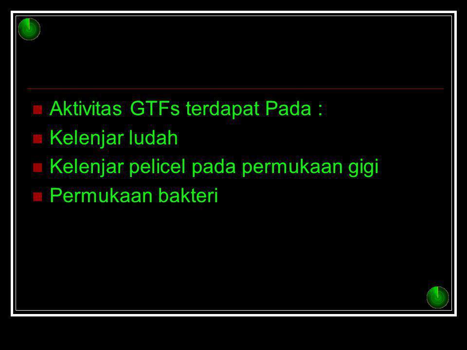 Aktivitas GTFs terdapat Pada :