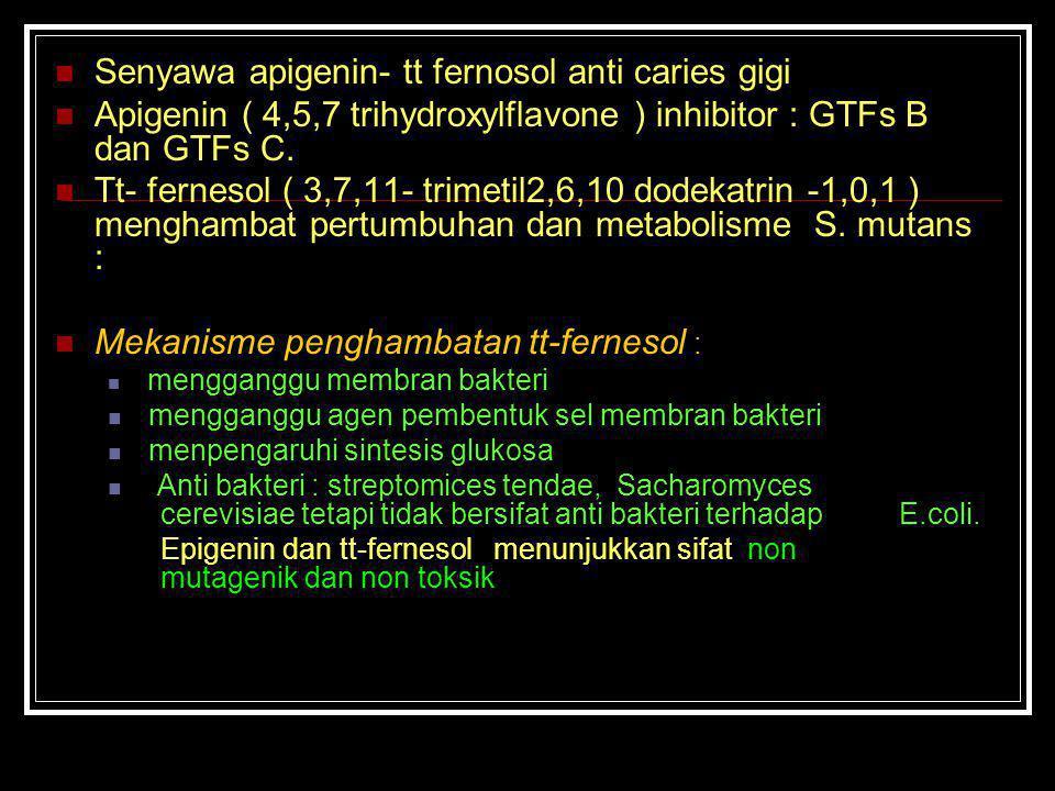 Senyawa apigenin- tt fernosol anti caries gigi