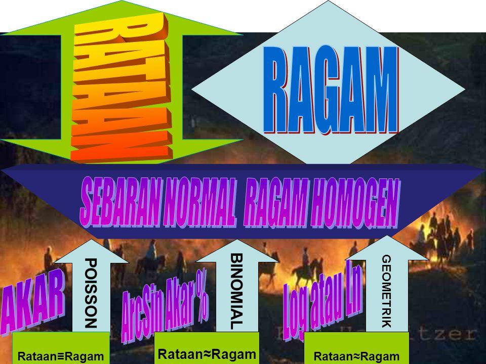 SEBARAN NORMAL RAGAM HOMOGEN