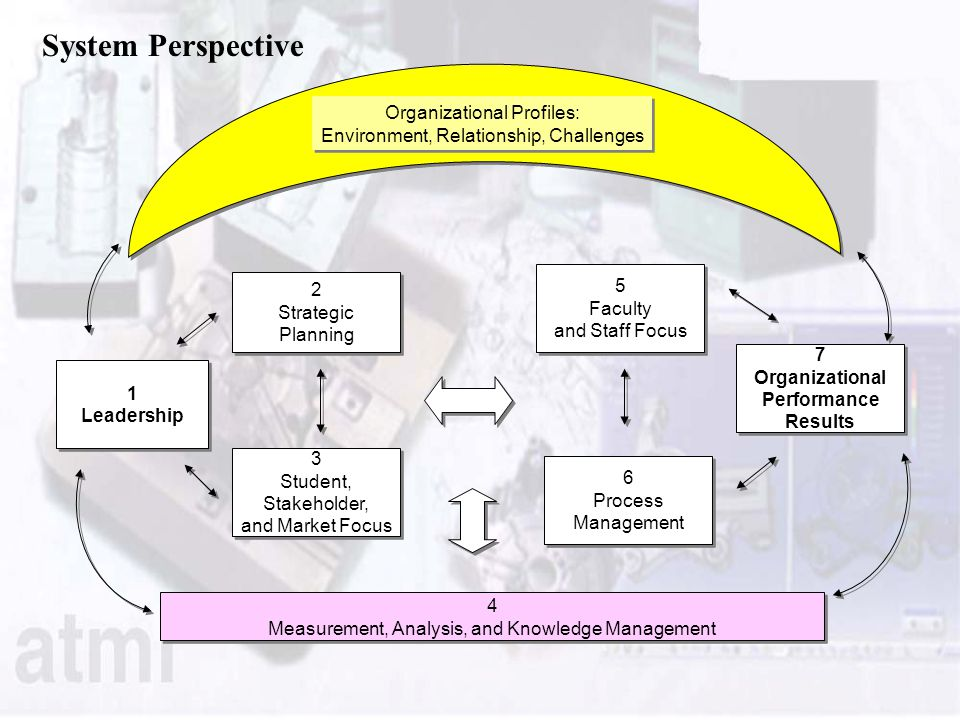 System Perspective Organizational Profiles:
