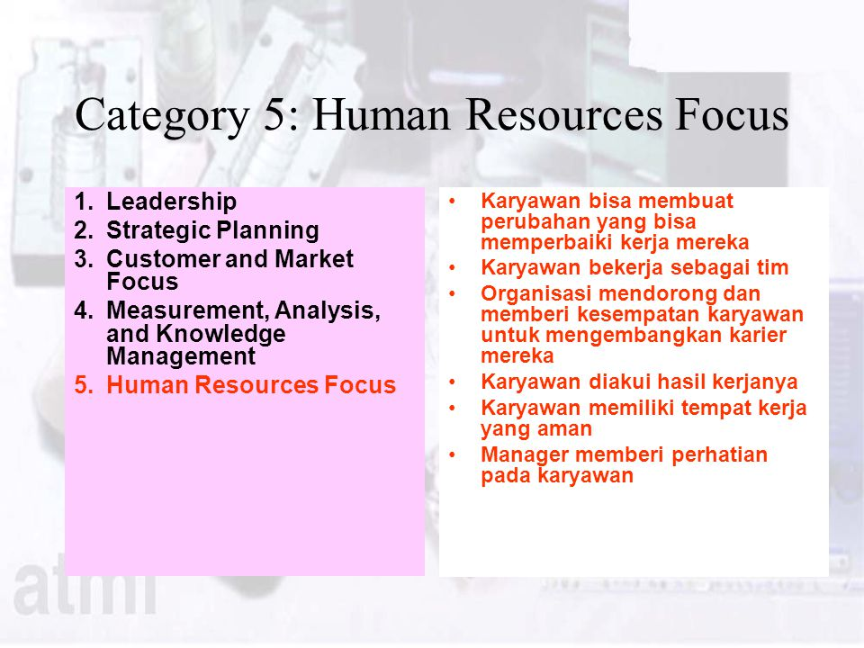 Category 5: Human Resources Focus