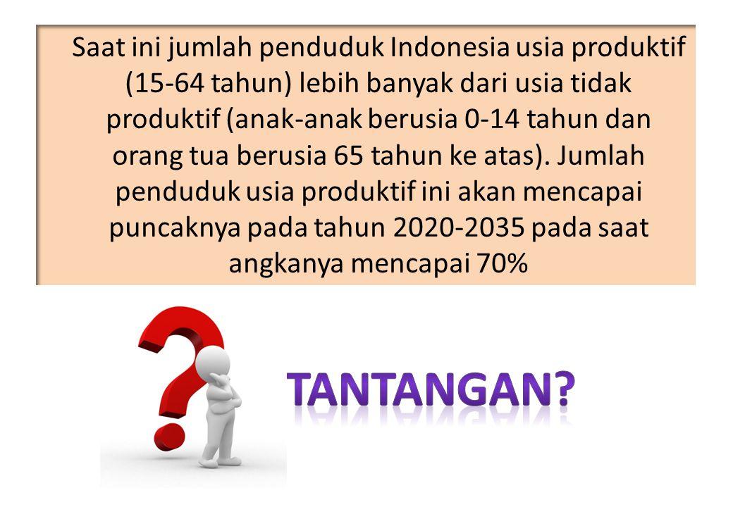 Saat ini jumlah penduduk Indonesia usia produktif (15-64 tahun) lebih banyak dari usia tidak produktif (anak-anak berusia 0-14 tahun dan orang tua berusia 65 tahun ke atas). Jumlah penduduk usia produktif ini akan mencapai puncaknya pada tahun 2020-2035 pada saat angkanya mencapai 70%
