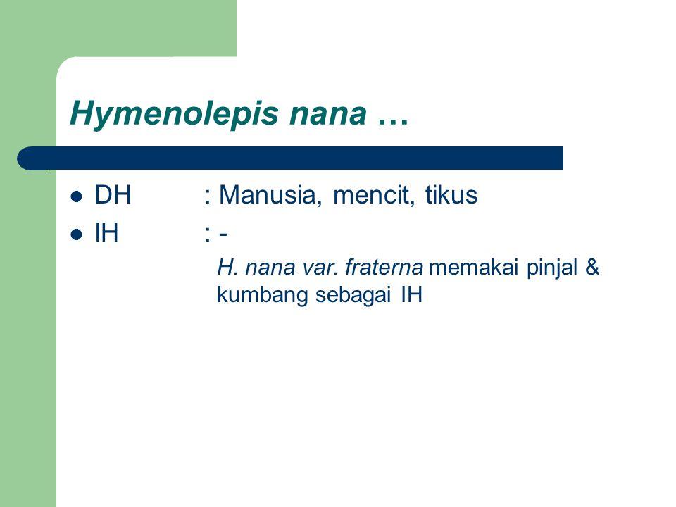 Hymenolepis nana … DH : Manusia, mencit, tikus IH : -