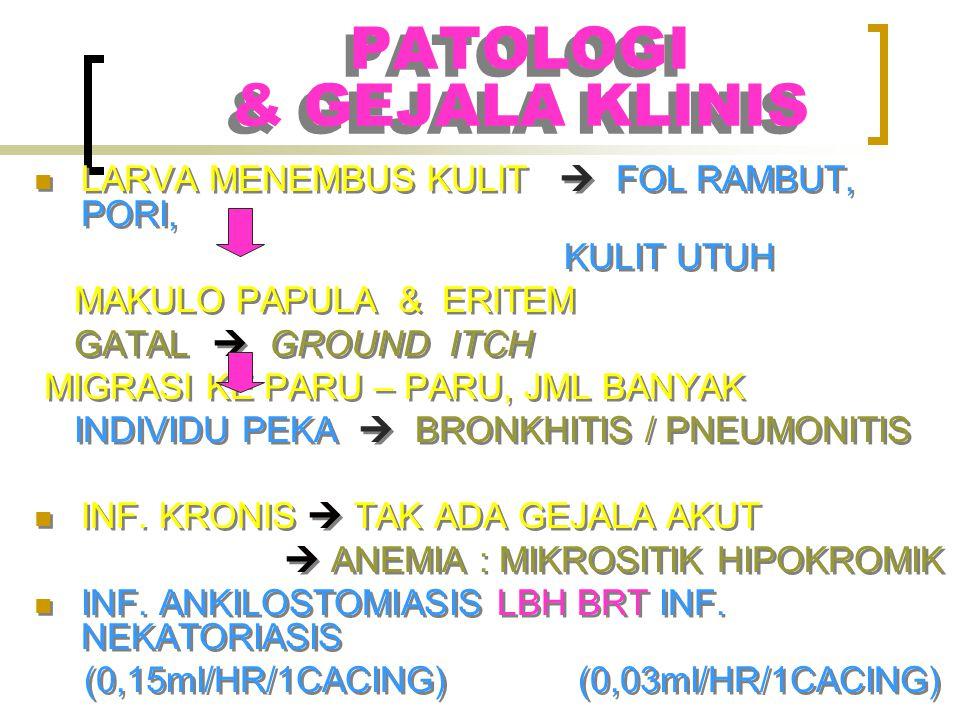 PATOLOGI & GEJALA KLINIS