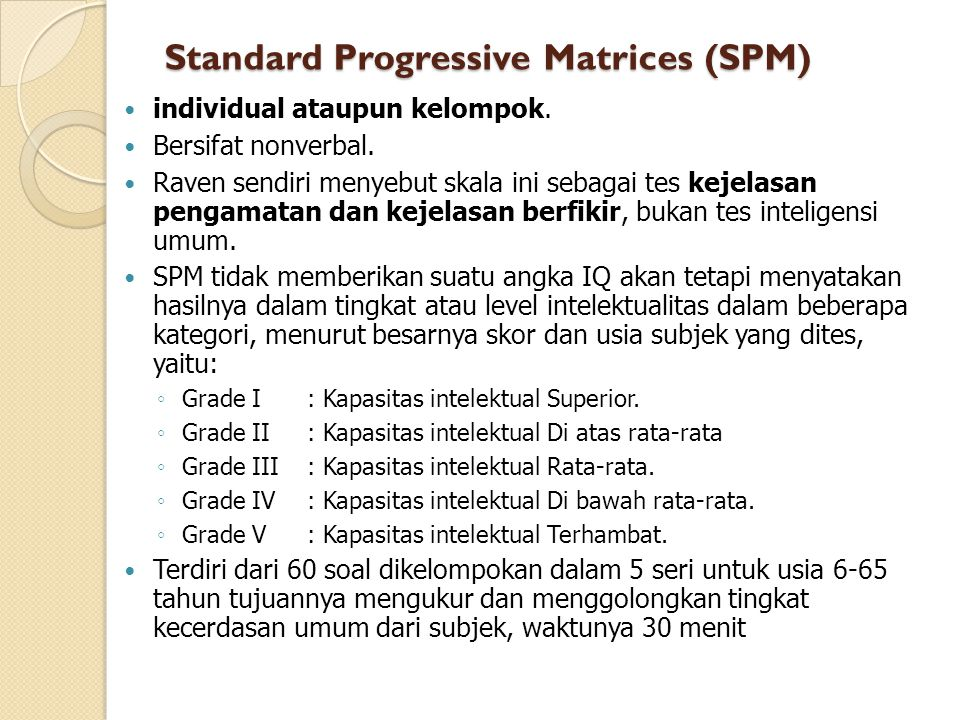 Standard Progressive Matrices (SPM)