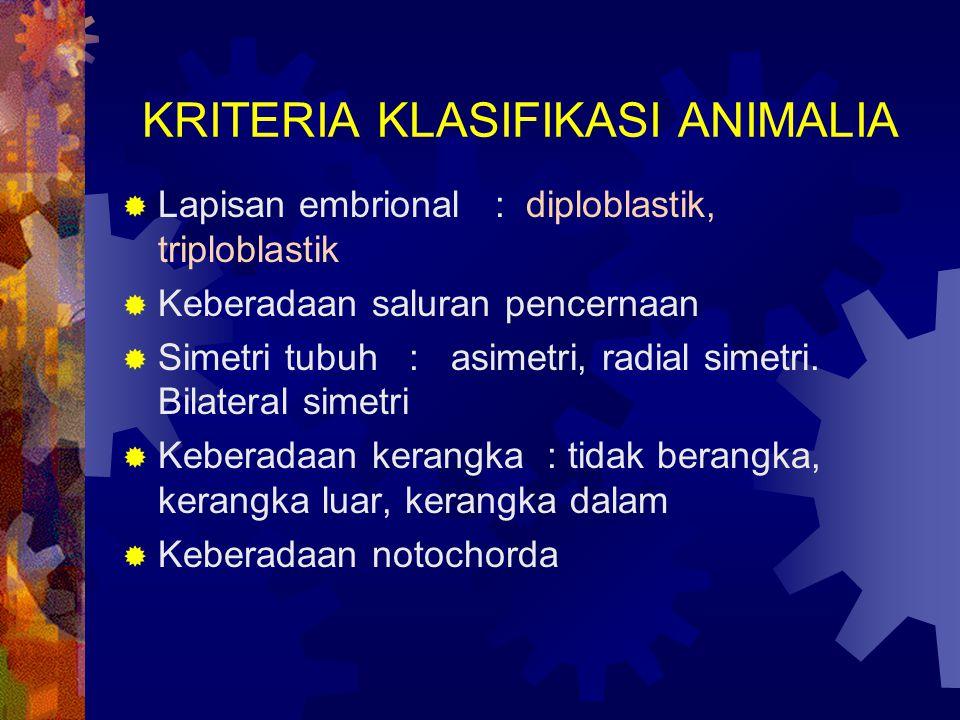KRITERIA KLASIFIKASI ANIMALIA