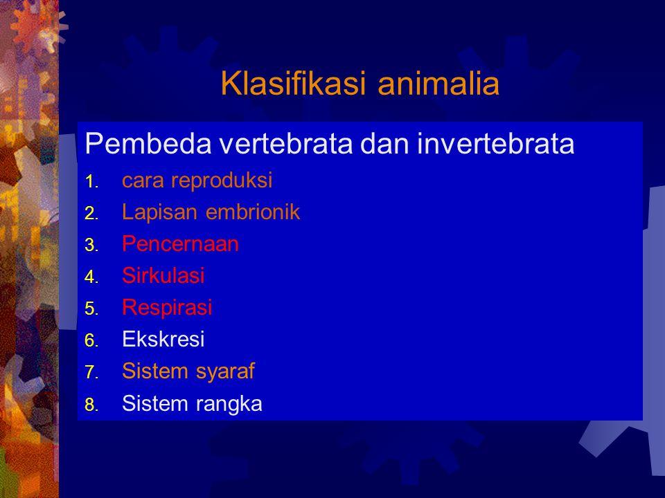 Klasifikasi animalia Pembeda vertebrata dan invertebrata