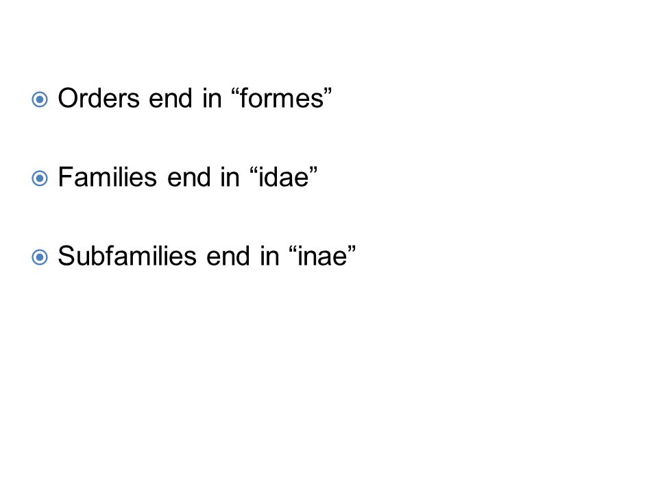 Orders end in formes Families end in idae Subfamilies end in inae