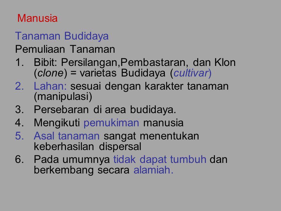 Manusia Tanaman Budidaya. Pemuliaan Tanaman. Bibit: Persilangan,Pembastaran, dan Klon (clone) = varietas Budidaya (cultivar)