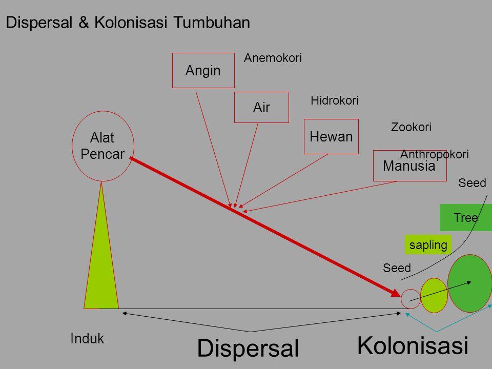 Dispersal & Kolonisasi Tumbuhan
