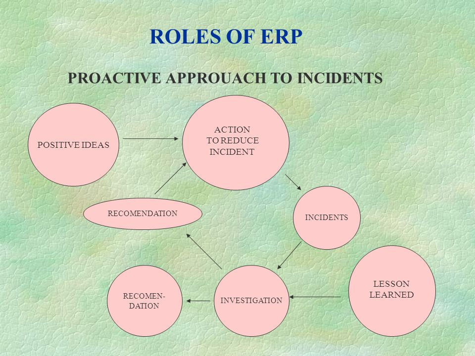 ROLES OF ERP PROACTIVE APPROUACH TO INCIDENTS POSITIVE IDEAS ACTION
