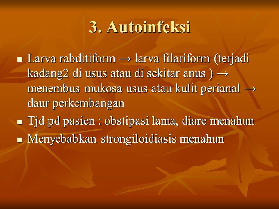 3. Autoinfeksi