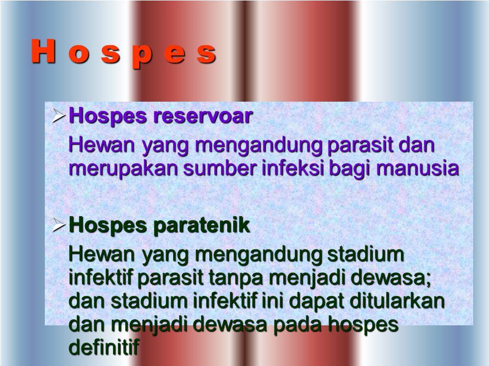 H o s p e s Hospes reservoar