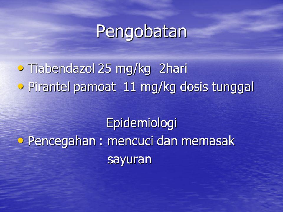 Pengobatan Tiabendazol 25 mg/kg 2hari