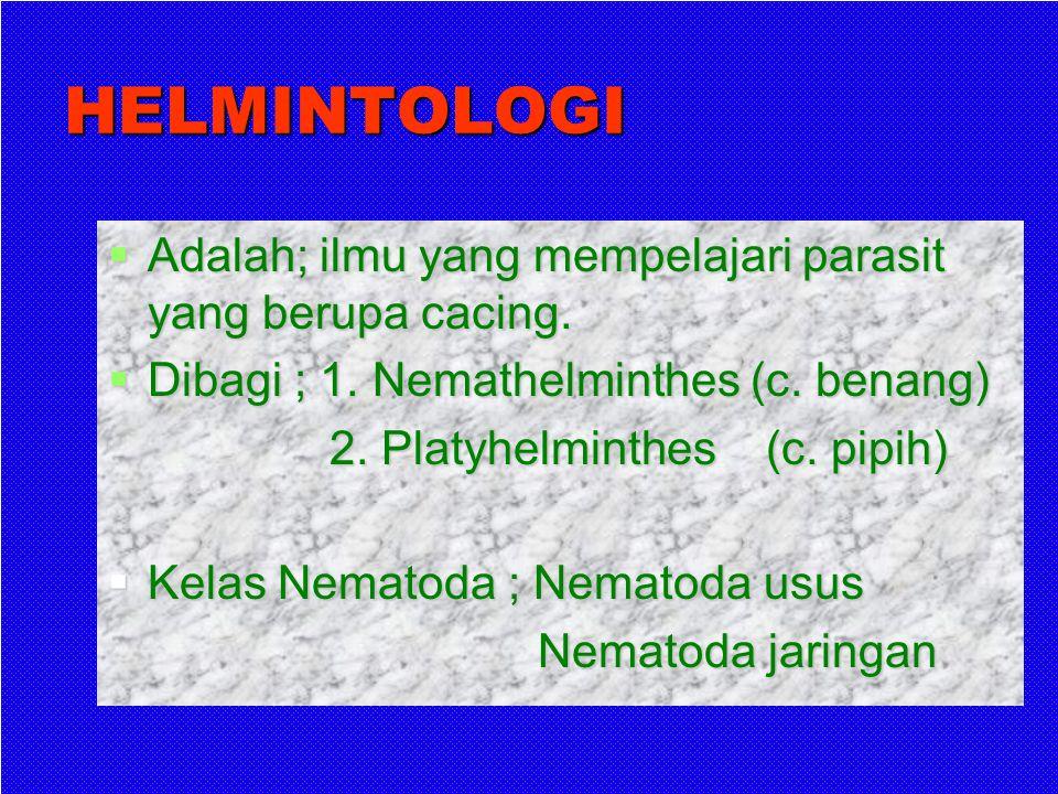 HELMINTOLOGI Adalah; ilmu yang mempelajari parasit yang berupa cacing.