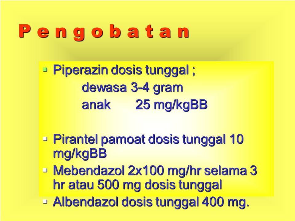P e n g o b a t a n Piperazin dosis tunggal ; dewasa 3-4 gram