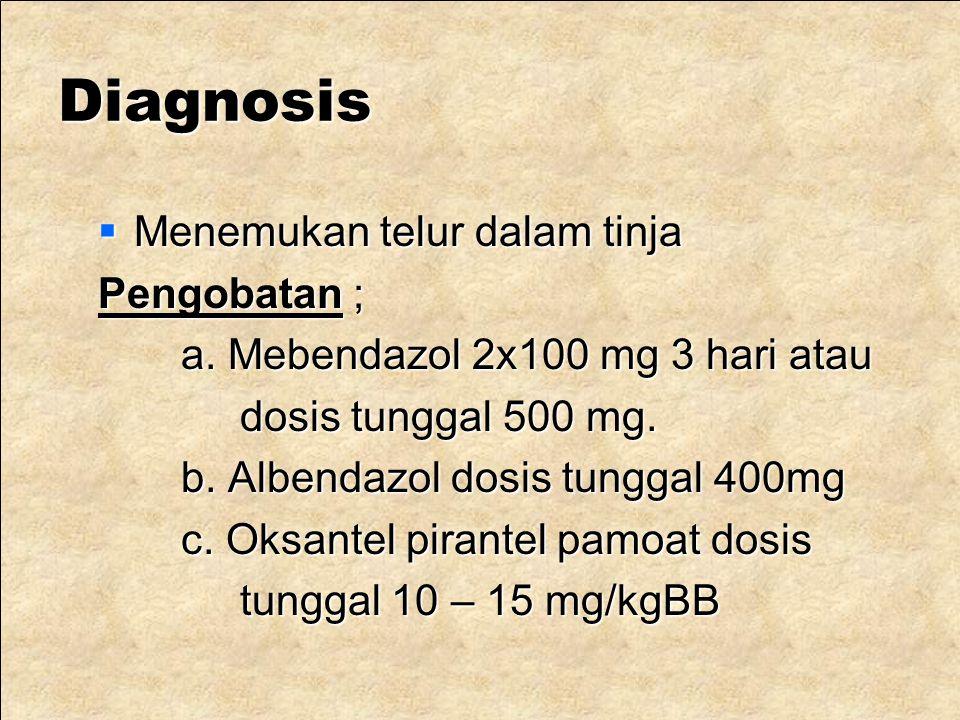 Diagnosis Menemukan telur dalam tinja Pengobatan ;