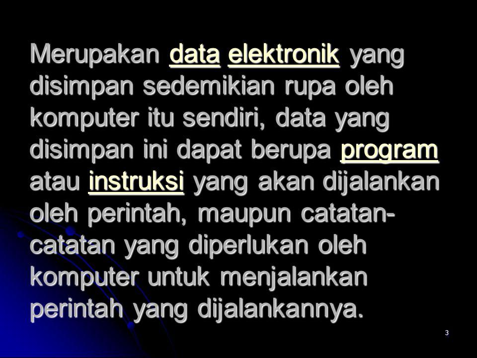 Merupakan data elektronik yang disimpan sedemikian rupa oleh komputer itu sendiri, data yang disimpan ini dapat berupa program atau instruksi yang akan dijalankan oleh perintah, maupun catatan-catatan yang diperlukan oleh komputer untuk menjalankan perintah yang dijalankannya.
