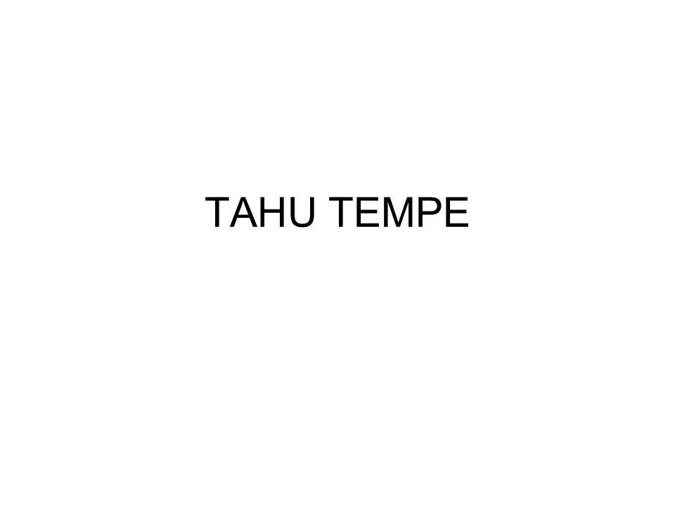 TAHU TEMPE