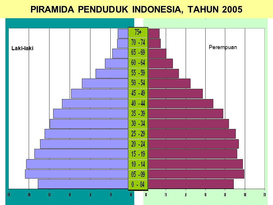PIRAMIDA PENDUDUK INDONESIA, TAHUN 2005