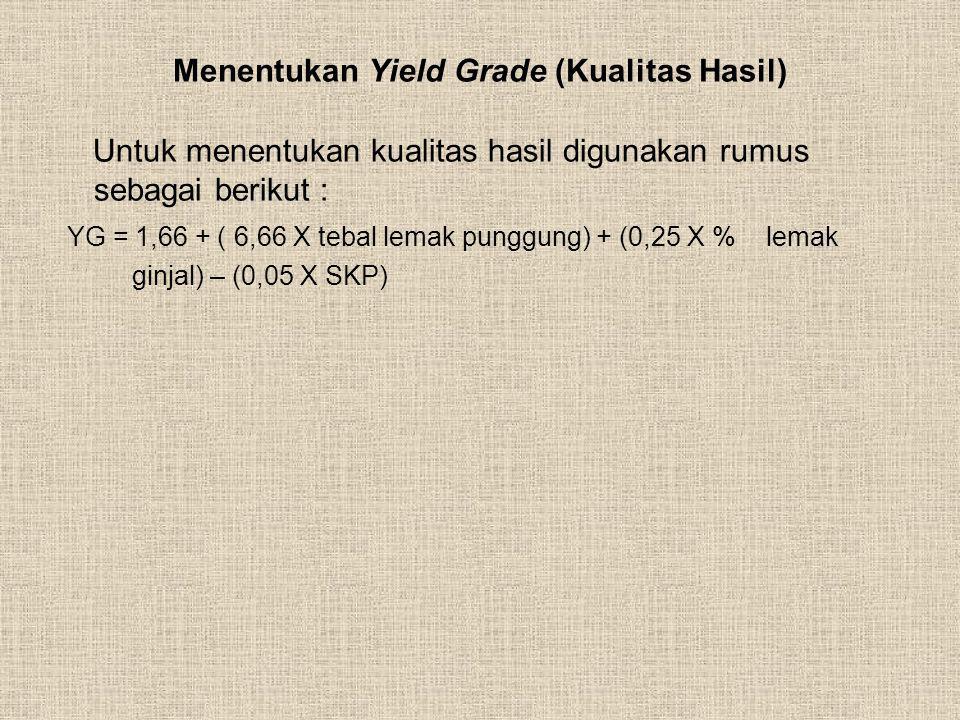 Menentukan Yield Grade (Kualitas Hasil)