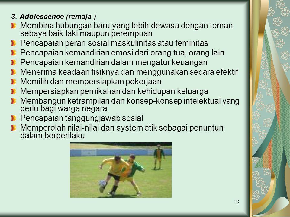 Pencapaian peran sosial maskulinitas atau feminitas