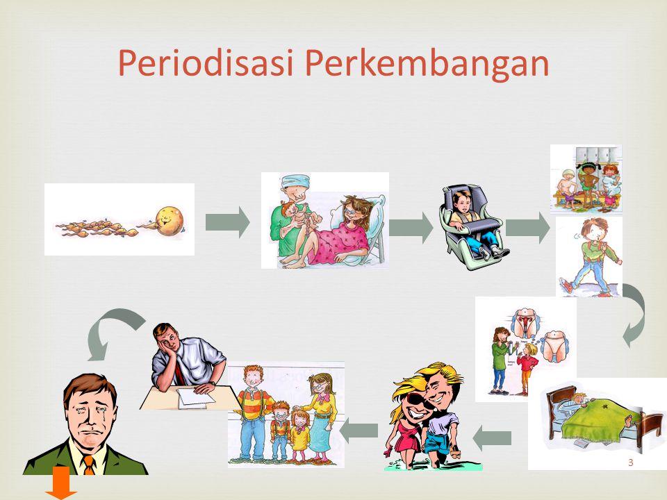 Periodisasi Perkembangan