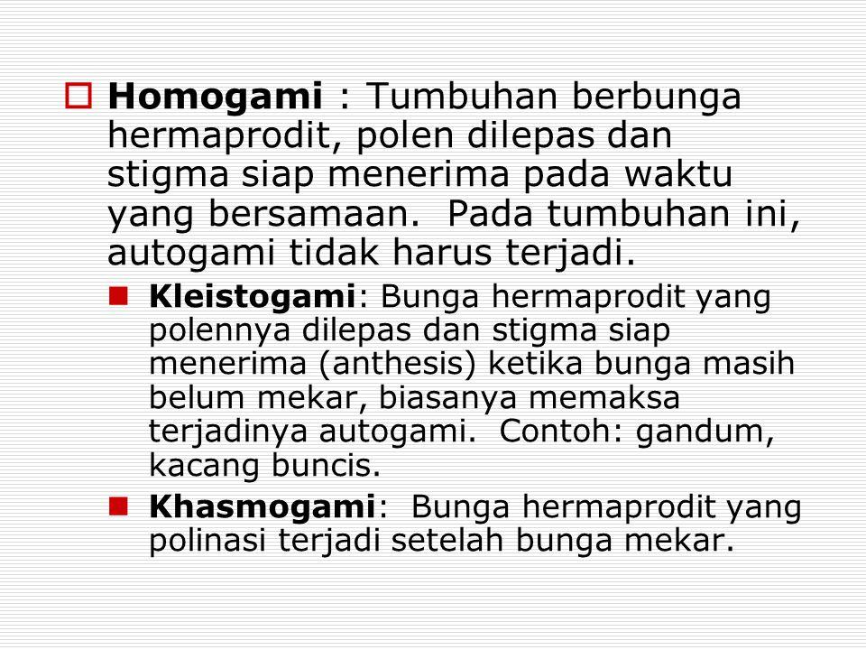 Homogami : Tumbuhan berbunga hermaprodit, polen dilepas dan stigma siap menerima pada waktu yang bersamaan. Pada tumbuhan ini, autogami tidak harus terjadi.