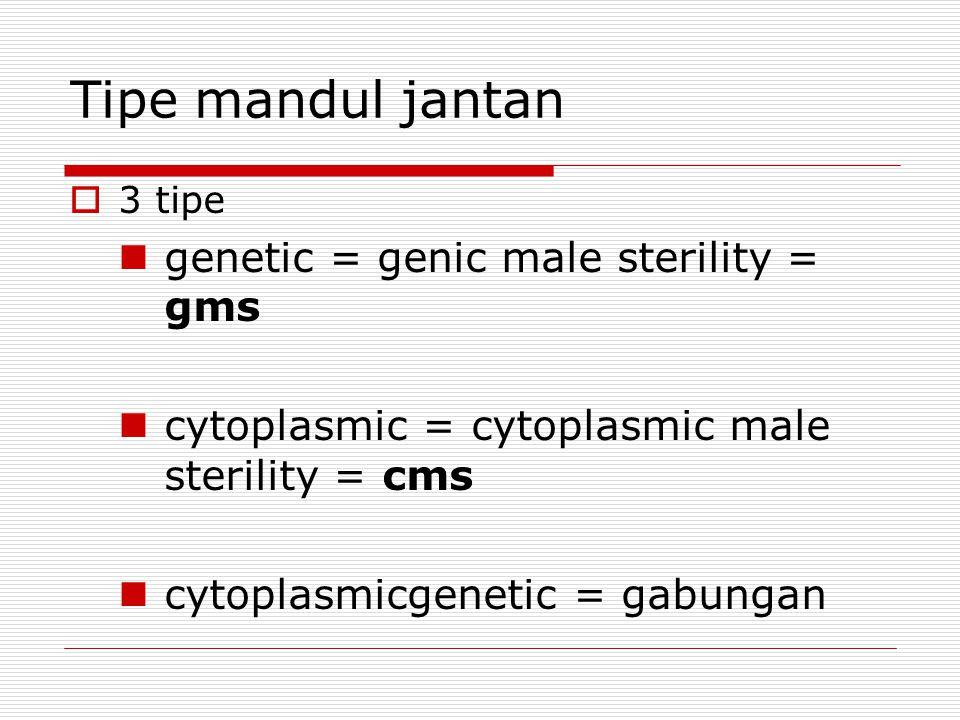 Tipe mandul jantan genetic = genic male sterility = gms