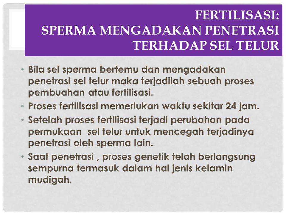 Fertilisasi: SPERMA MENGADAKAN PENETRASI TERHADAP SEL TELUR