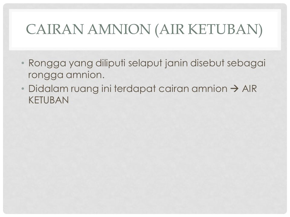 CAIRAN AMNION (AIR KETUBAN)