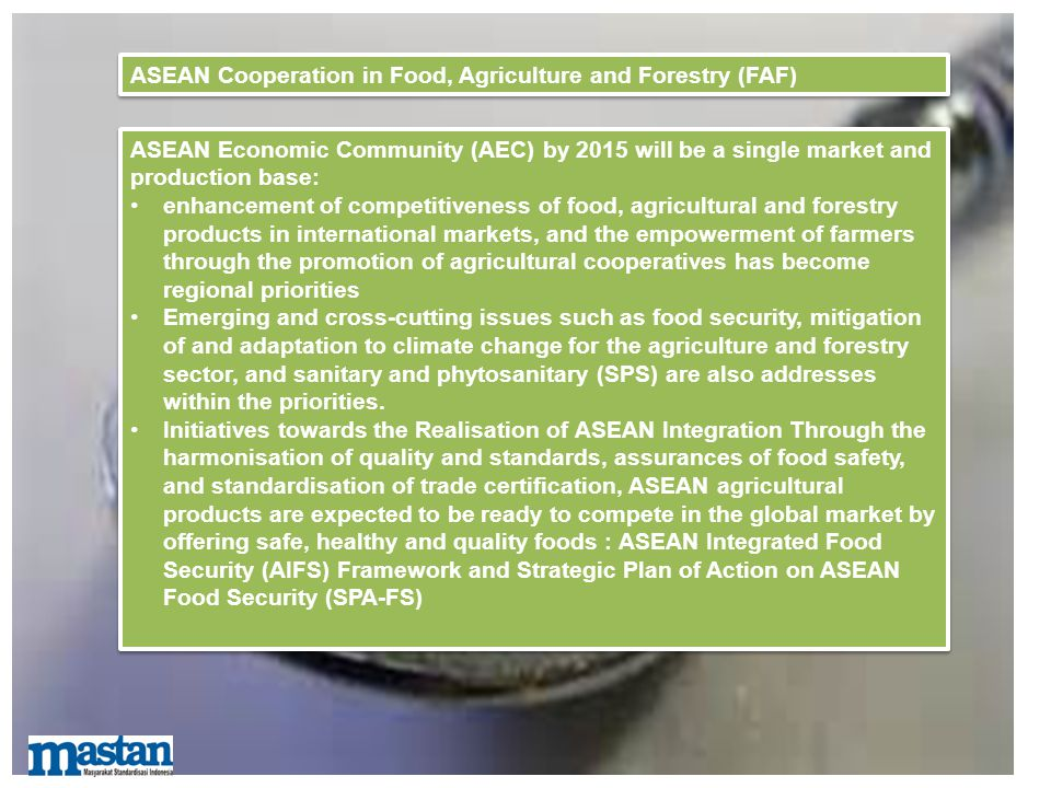 ASEAN Cooperation in Food, Agriculture and Forestry (FAF)
