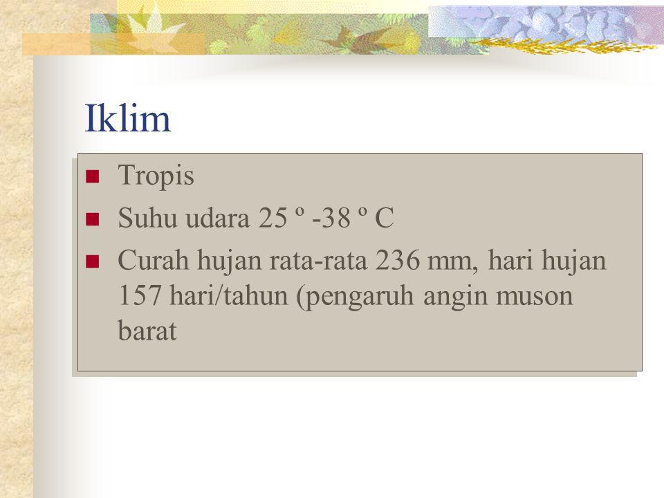 Iklim Tropis Suhu udara 25 º -38 º C