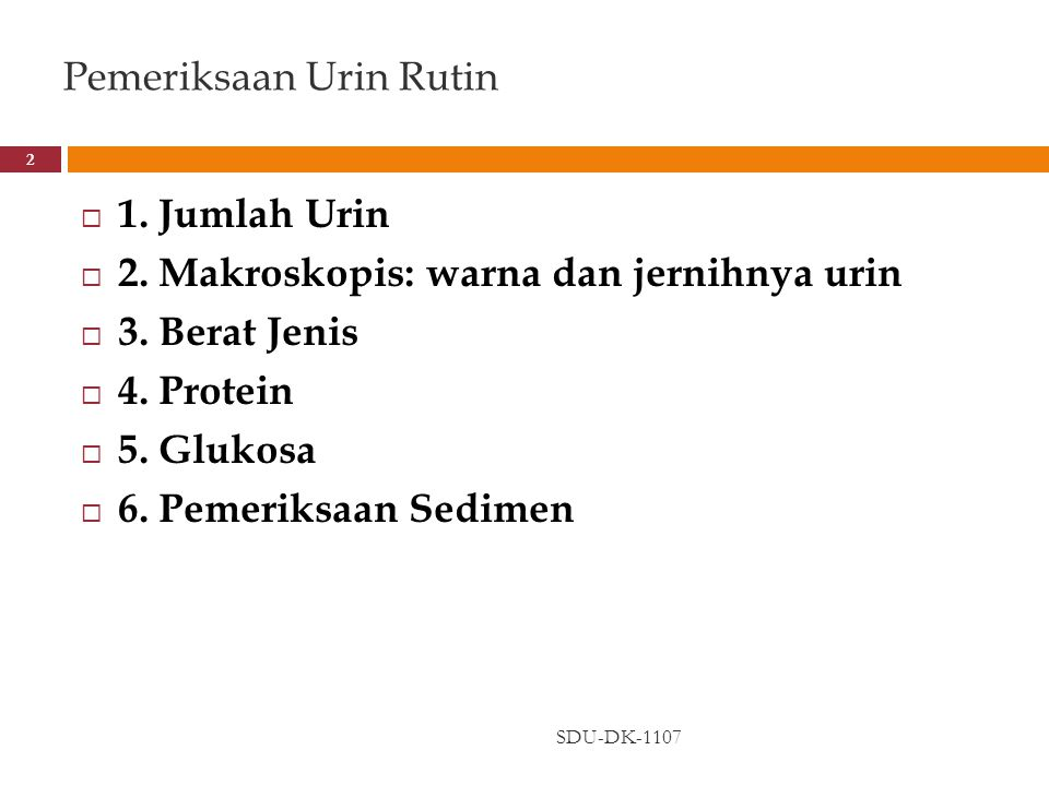 Pemeriksaan Urin Rutin
