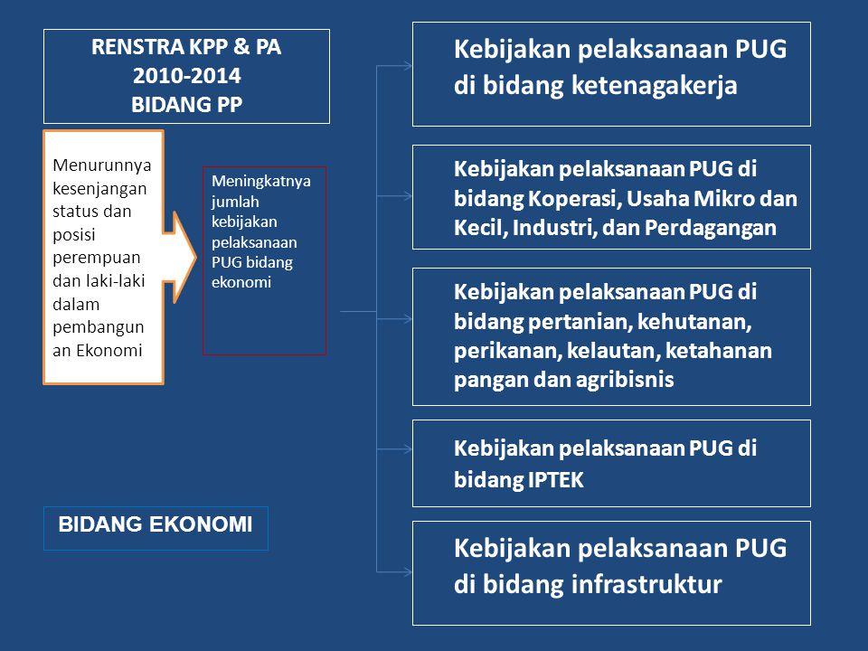 RENSTRA KPP & PA 2010-2014 BIDANG PP